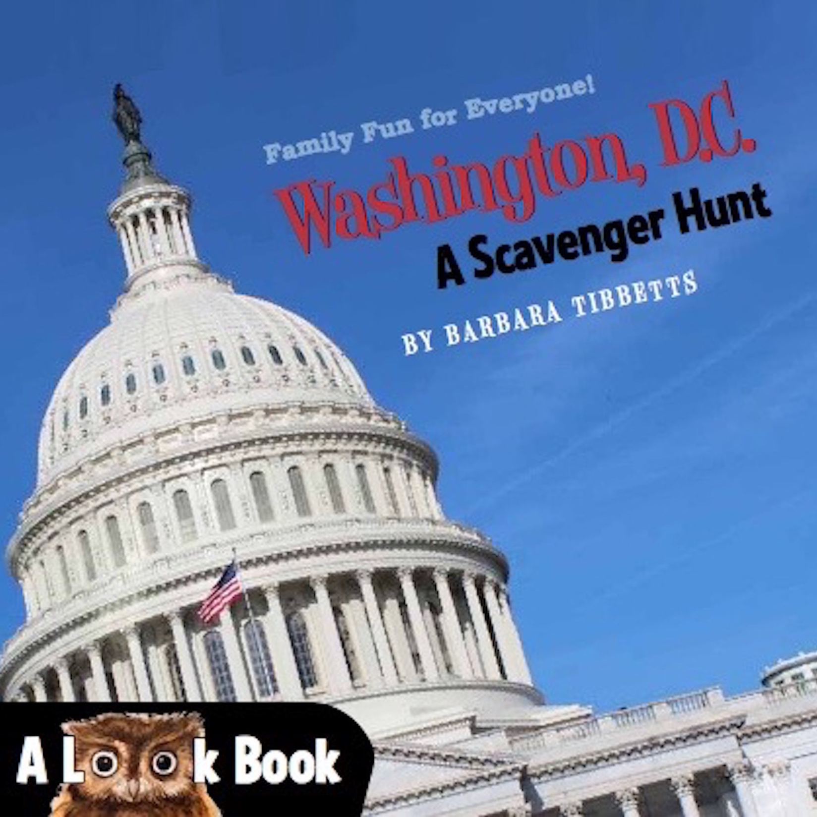 Washington, D.C. – Look Book Scavenger Hunt
